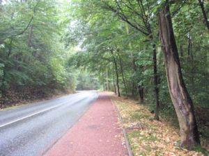 road400